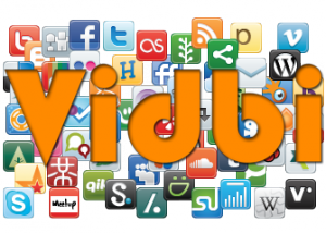 vidbi-social-media-businesses